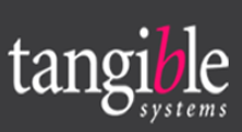 Tangible Systems